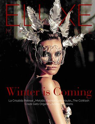 Other Publications: Eluxe Magazine Winter Issue, FRE Digital copy from MagCloud
