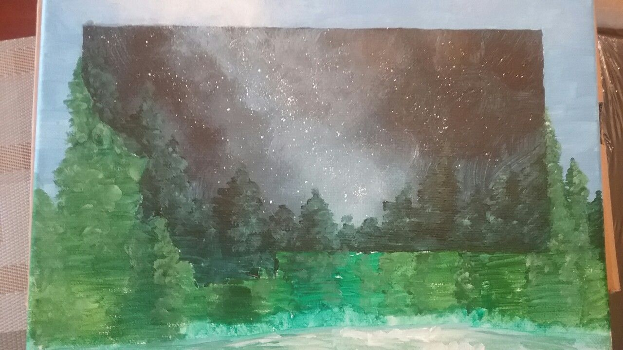 Starry montana sky painting (by Ali c)