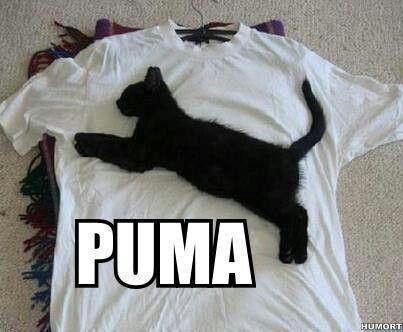 LOL! :P