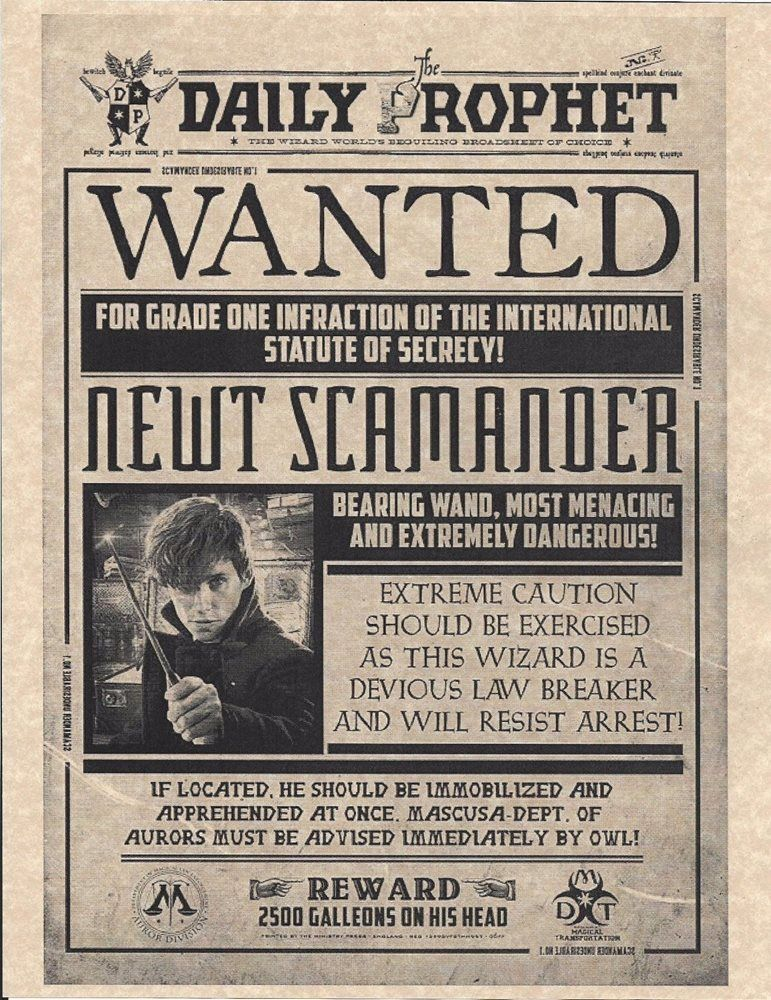 Harry Potter Daily Prophet Wanted Newt Scamander Fant 771x1000 Jpeg Daily Prophet Harry Potter Harry Potter Printables