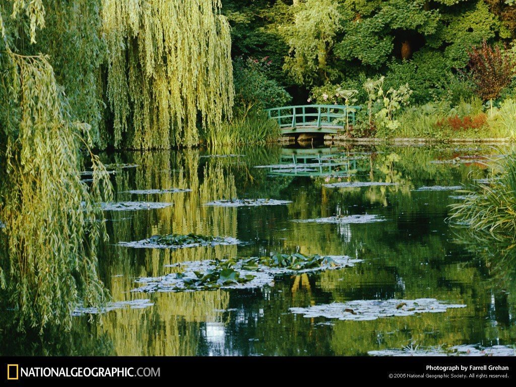 Subtle Light And Shade Reveal Impressionist Painter Claude Monetu0027s  Self Designed Gardens At Giverny, France. The Water Lily Pond Inspired The  Much Loved ...