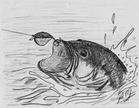 39 the bass fish 39 by john jones the art of drawing for Fish scenery drawing