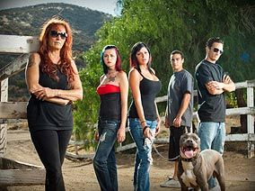 Pit Bulls And Parolees Animal Planet Pitbull Chien Heros