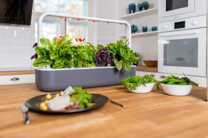 Enchanting Indoor Herb Garden Cabinet With Under Counter Led Light