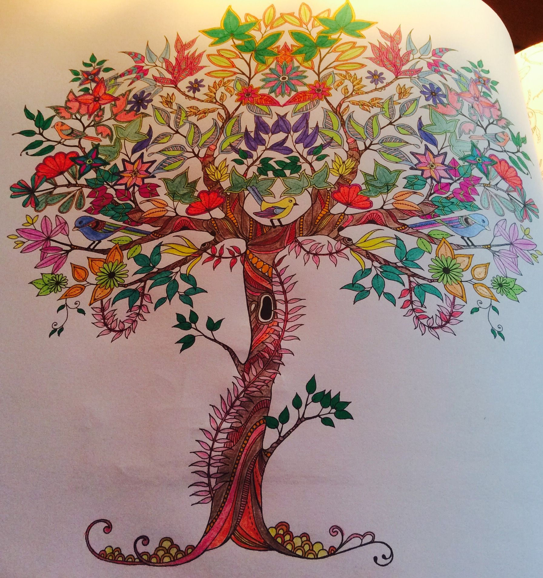 Magical Tree From Johanna Basford Secret Garden