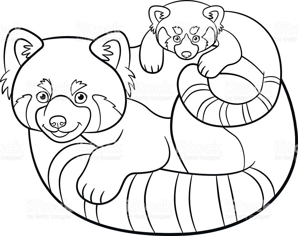 Coloring pages Mother red panda with her cute baby