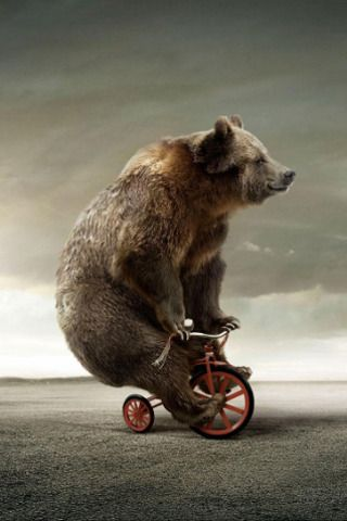 Download Free Circus Bear On Tricycle Iphone Wallpaper
