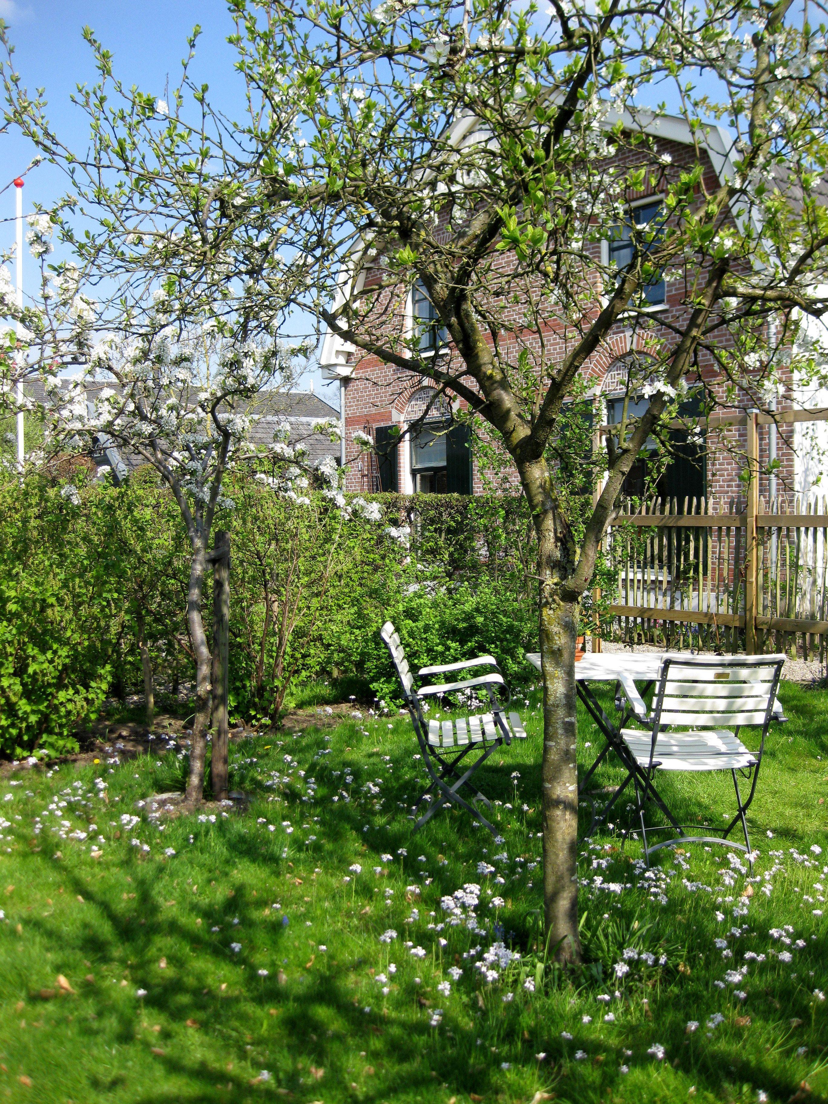 Boomgaard natuurlijke landelijke tuinen pinterest tuin tuinen en tuinieren - Landschapstuin idee ...