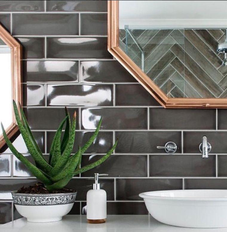 Hasil gambar untuk aloe vera bathroom