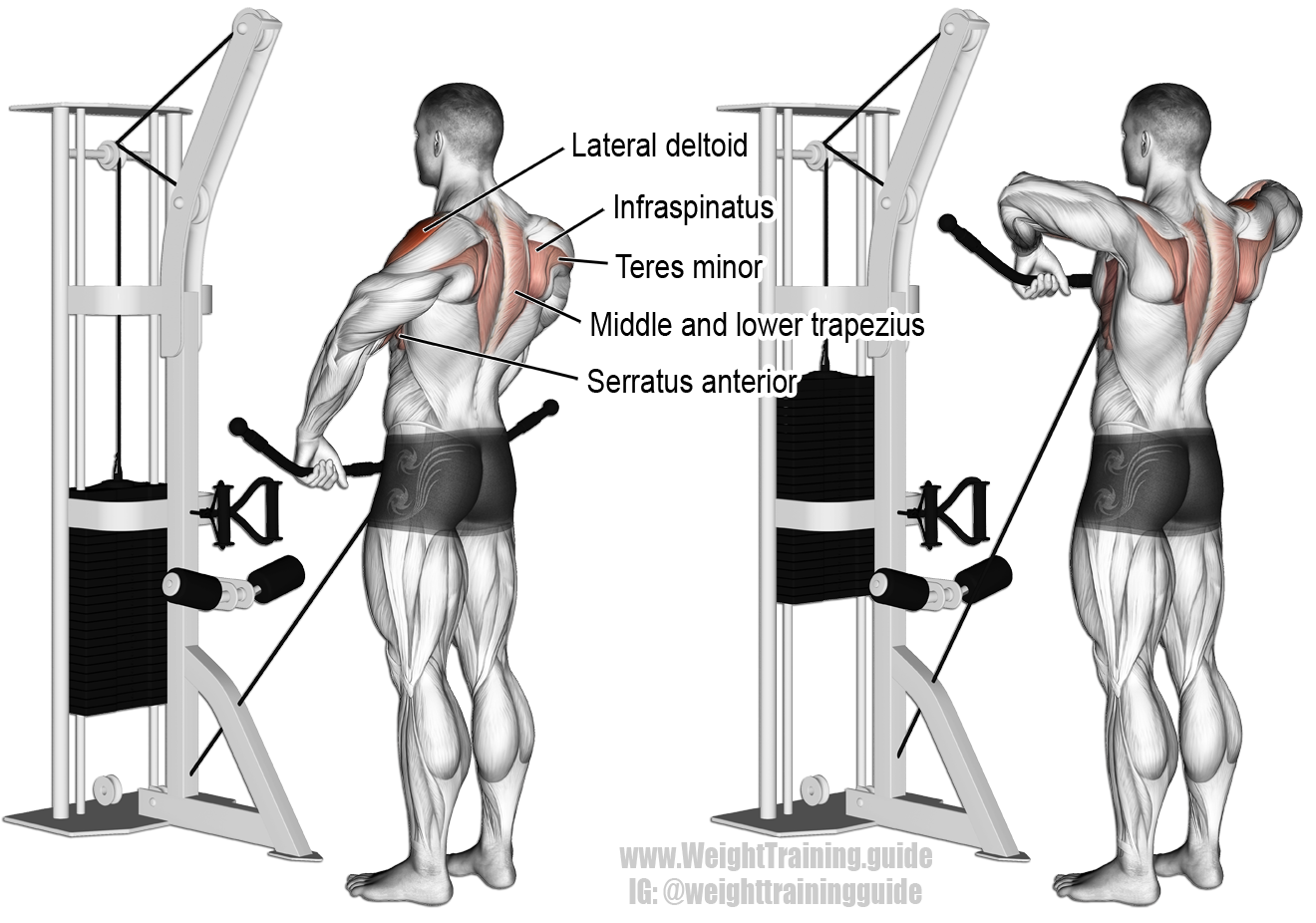 Cable wide grip upright row instructions and video ...