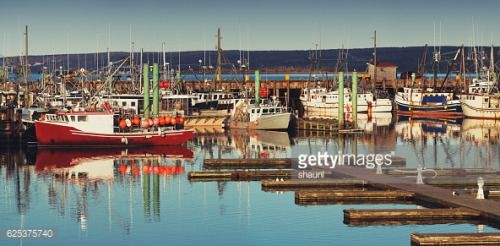 The piers and wharves of the scallop fleet in Digby, Nova... #novalesna: The piers and wharves of the scallop fleet in Digby,… #novalesna