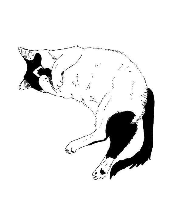 Cat Sleeping Print Cat Drawing Cat Wall Art Cat Print Cat Art