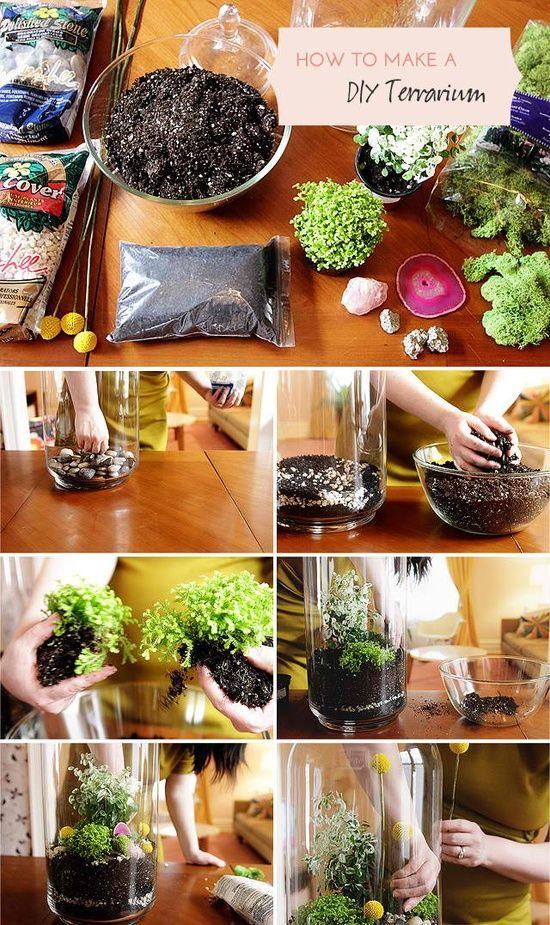 Make one for me & one for mom DIY Home Terrarium