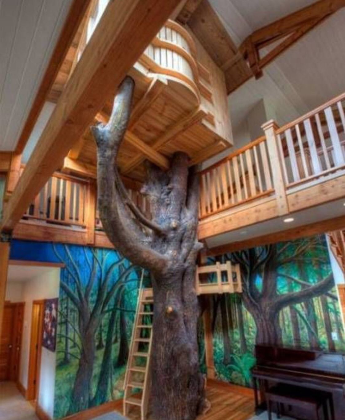In the Tree Tops... House Indoor tree house, Cool tree
