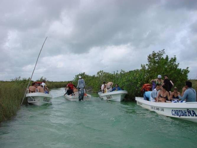El decreto de creación de la reserva fue emitido el 20 de enero de 1986; el libro regirá las actividades en la zona protegida.