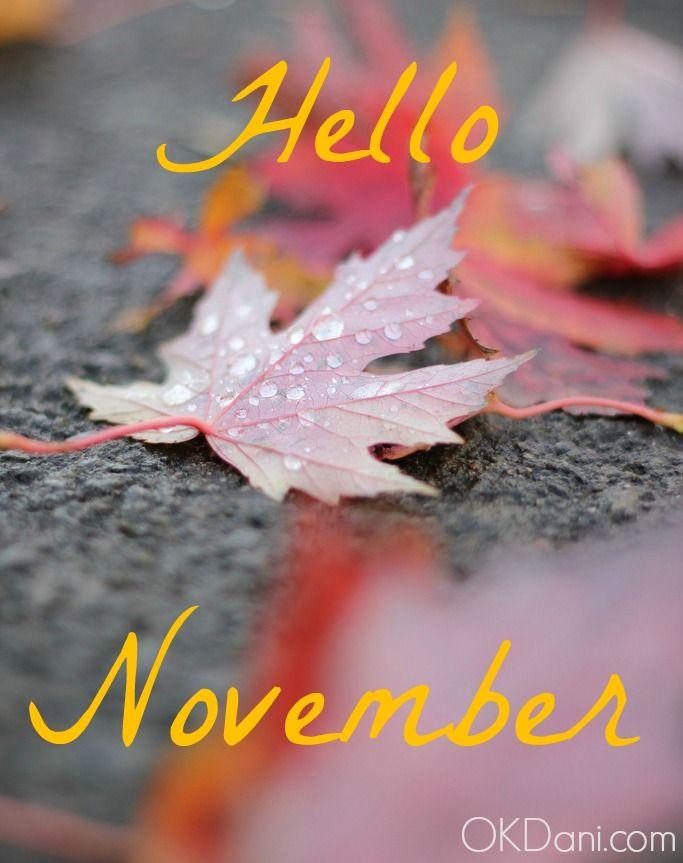 Hello November ⋆ Ok, Dani