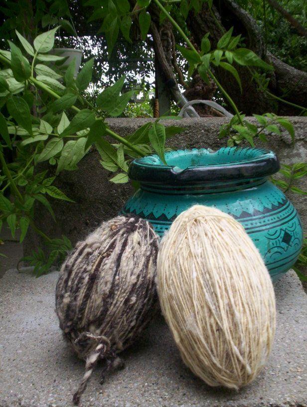 Laine filée au rouet : brebis landaise rustique et mouton d'Ouessant