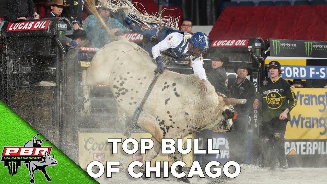 Pin on Pbr Bulls