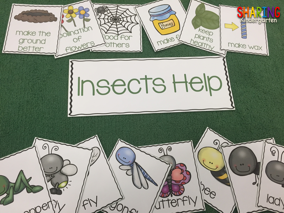 insects print amp play pack powerful prek djur insekter