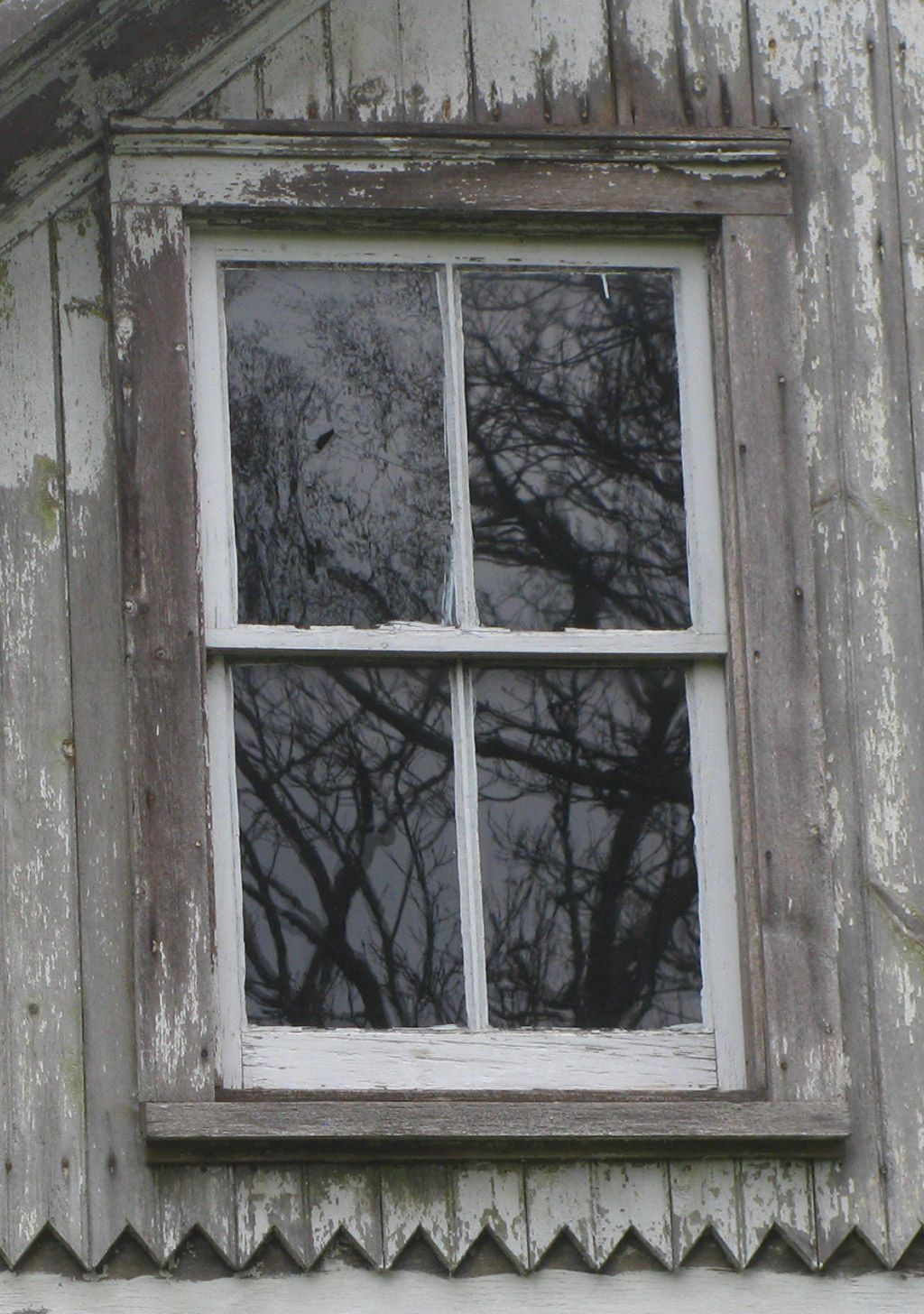 Historic Windows The Truth About Old Wood Window Designs Energy Saving And Repair Learn Sash Replacement Advise