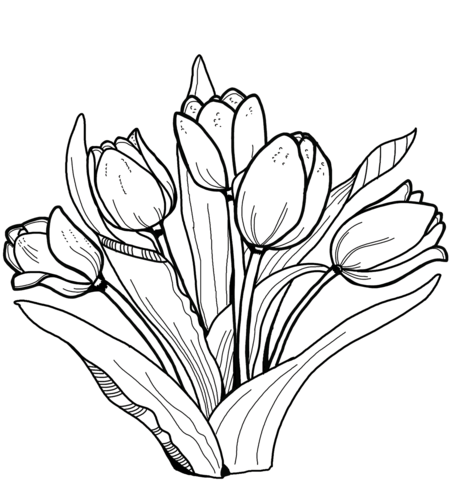 Tulips Coloring page in 2020 | Abstract coloring pages ...
