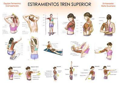 Tabla Estiramientos Tren Superior Jpg 400 283 Estiramientos Ejercicios De Fisioterapia Ejercicios Para Dolor De Espalda