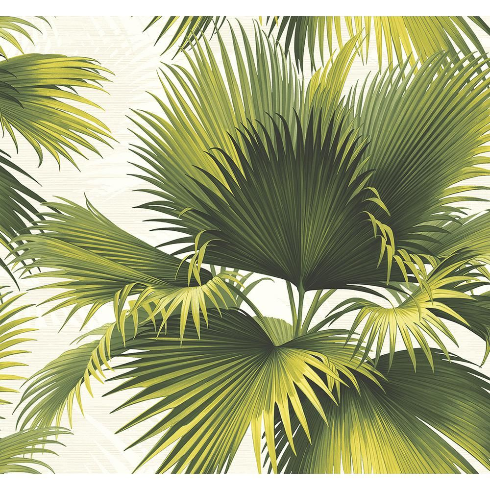 James Endless Summer Green Palm Wallpaper PS40114