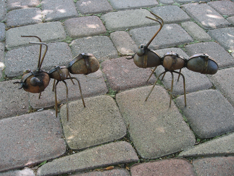 Rock ants Backyard decor, Adobe design, Home and garden