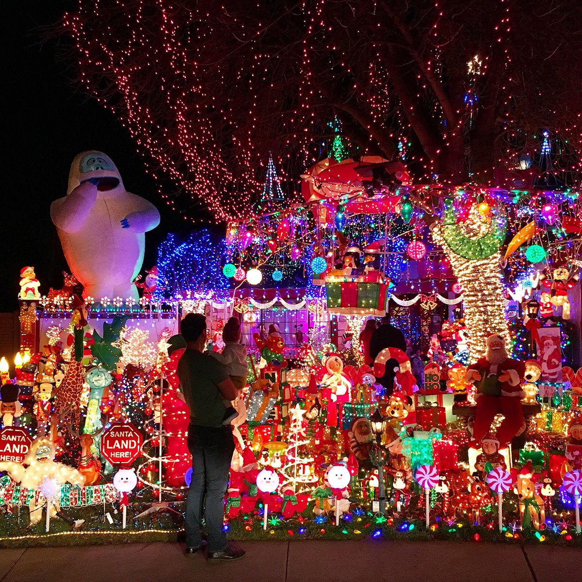 Holiday Outing Ideas With Your Kids Christmas Light Installation Christmas Lights Christmas Light Displays