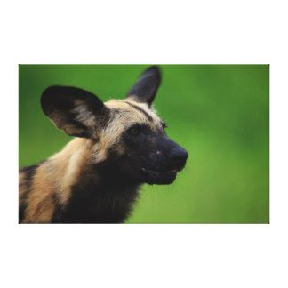 paintings of wild dogs - Google Search