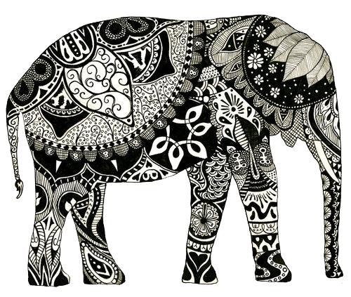 Elephants Symbolize Advice Seekers Good Luck Obstacles Overcome