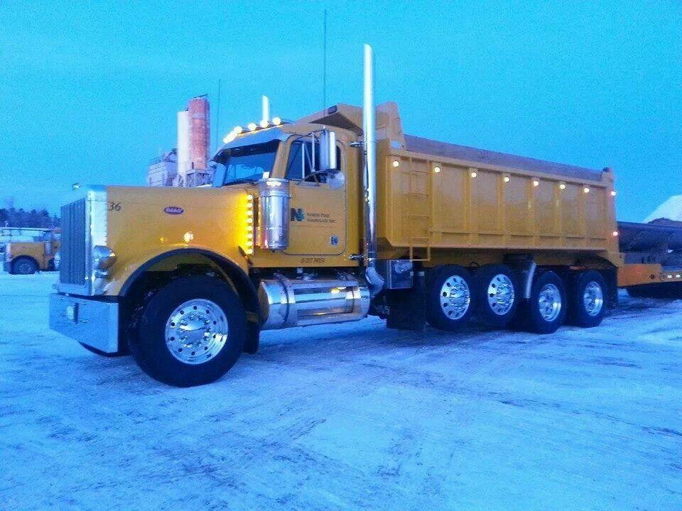 Yellow Bee Nice Dump Truck With Images Dump Trucks Big Rig