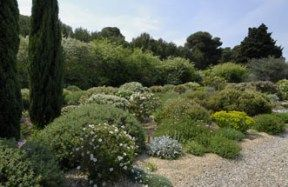Amenager jardin mediterraneen jardins du sud pinterest for Amenager son jardin en provence