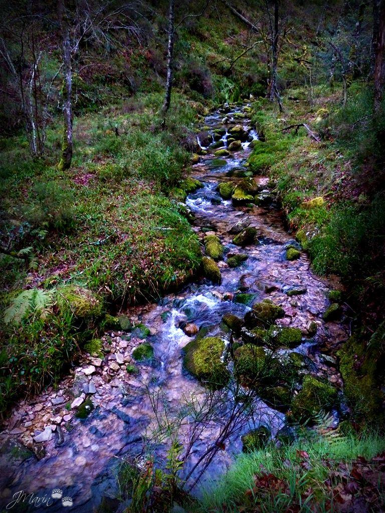 Nisón river, El Palo, Pola de Allande, Asturias, Spain