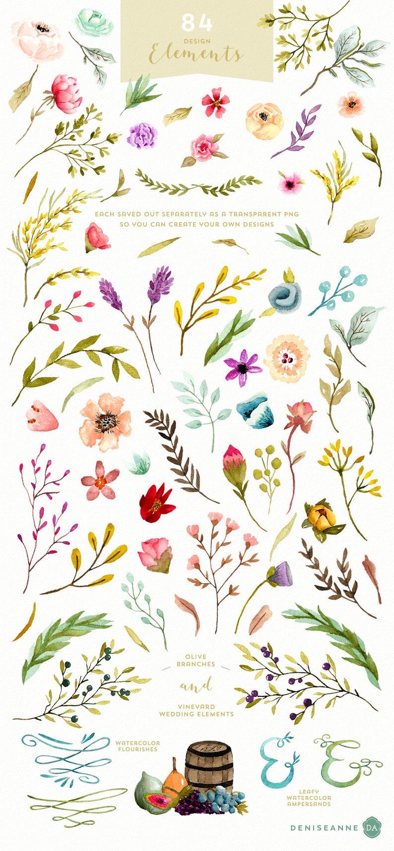 Watercolor Wildflower Individual Graphics Elements Digital | Etsy