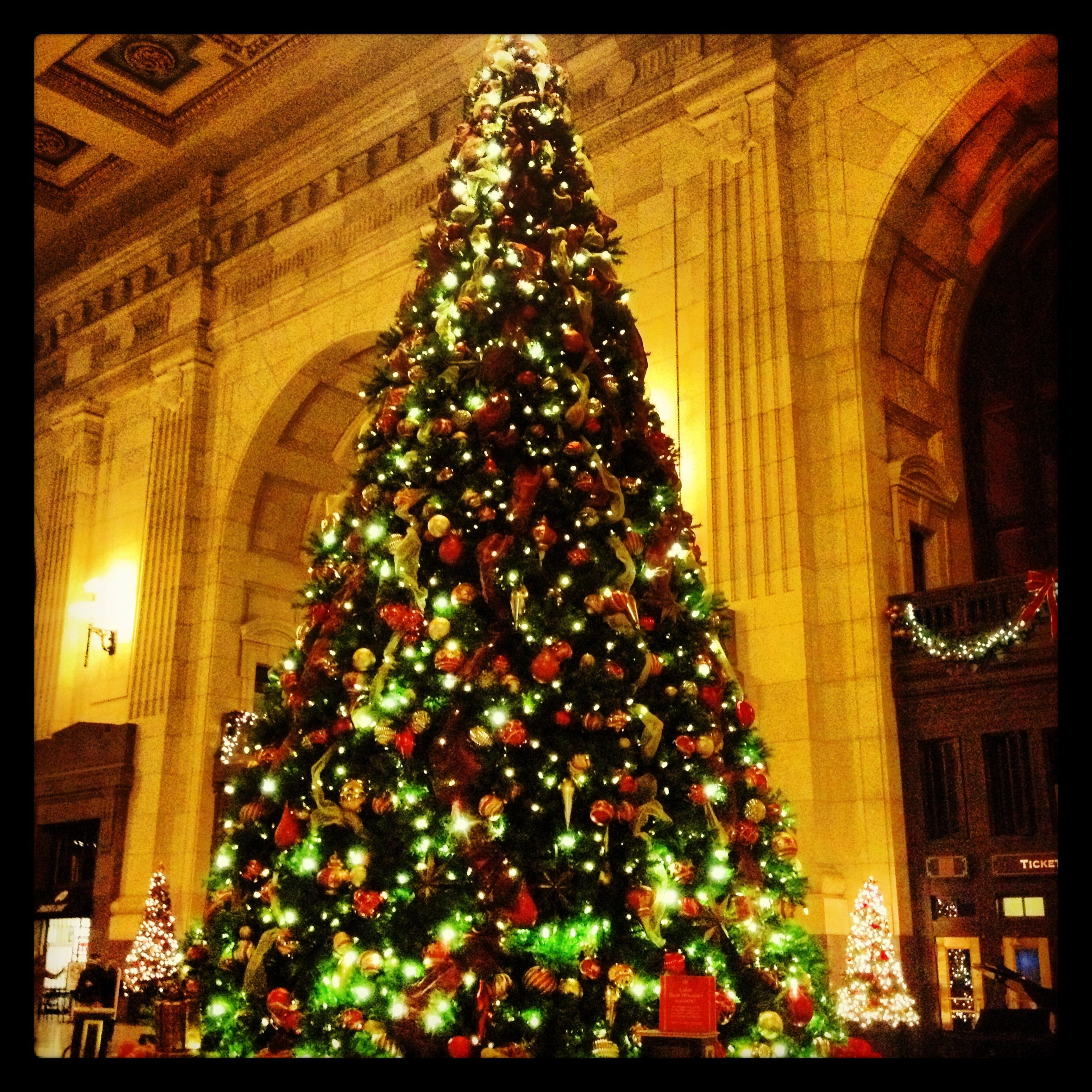 Awesome Christmas Tree At Union Station, Kansas City