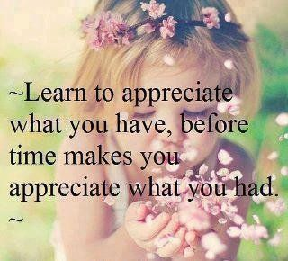 Learn to appreciate what you have,before time makes you appreciate what you had.