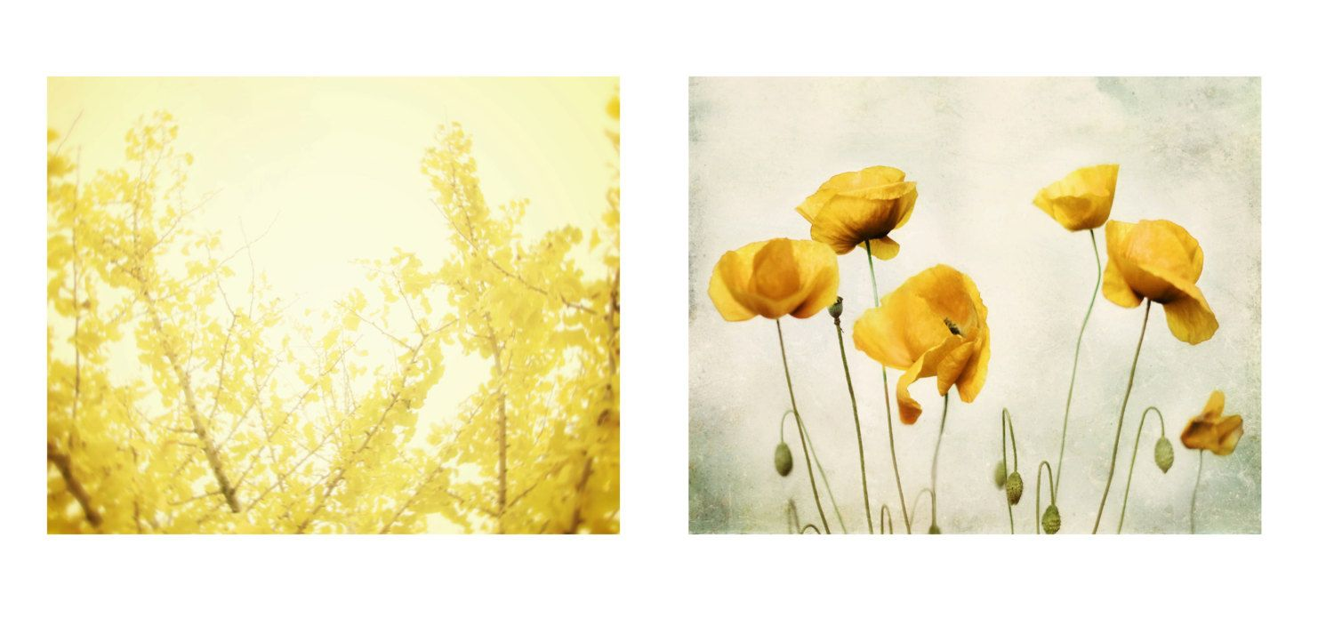 Nature Photography Set of 4 Four Prints by AmyTylerPhotography ...