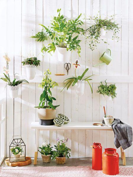 Sichtschutz für den Balkon kreative Ideen Garten