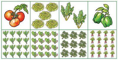 Plans for Small-Space Vegetable Gardens | Gardener's Supply