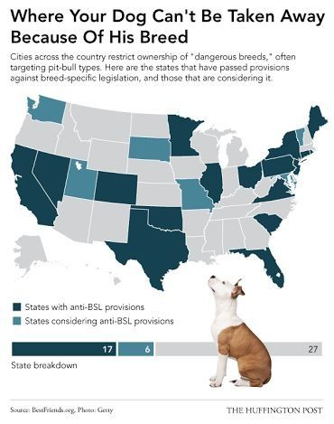 States With Bsl Laws And The States Considering The Bsl Law
