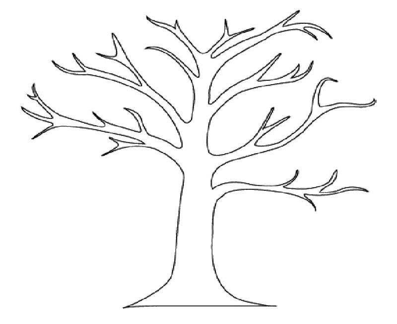 A Bare Tree Colouring Pages Tree Coloring Page Fall Leaves