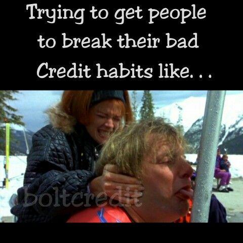 06e9b4315d5ca01ead648a8d01f6ade7 dumb & dumber funny laugh meme jim carrey movie credit repair