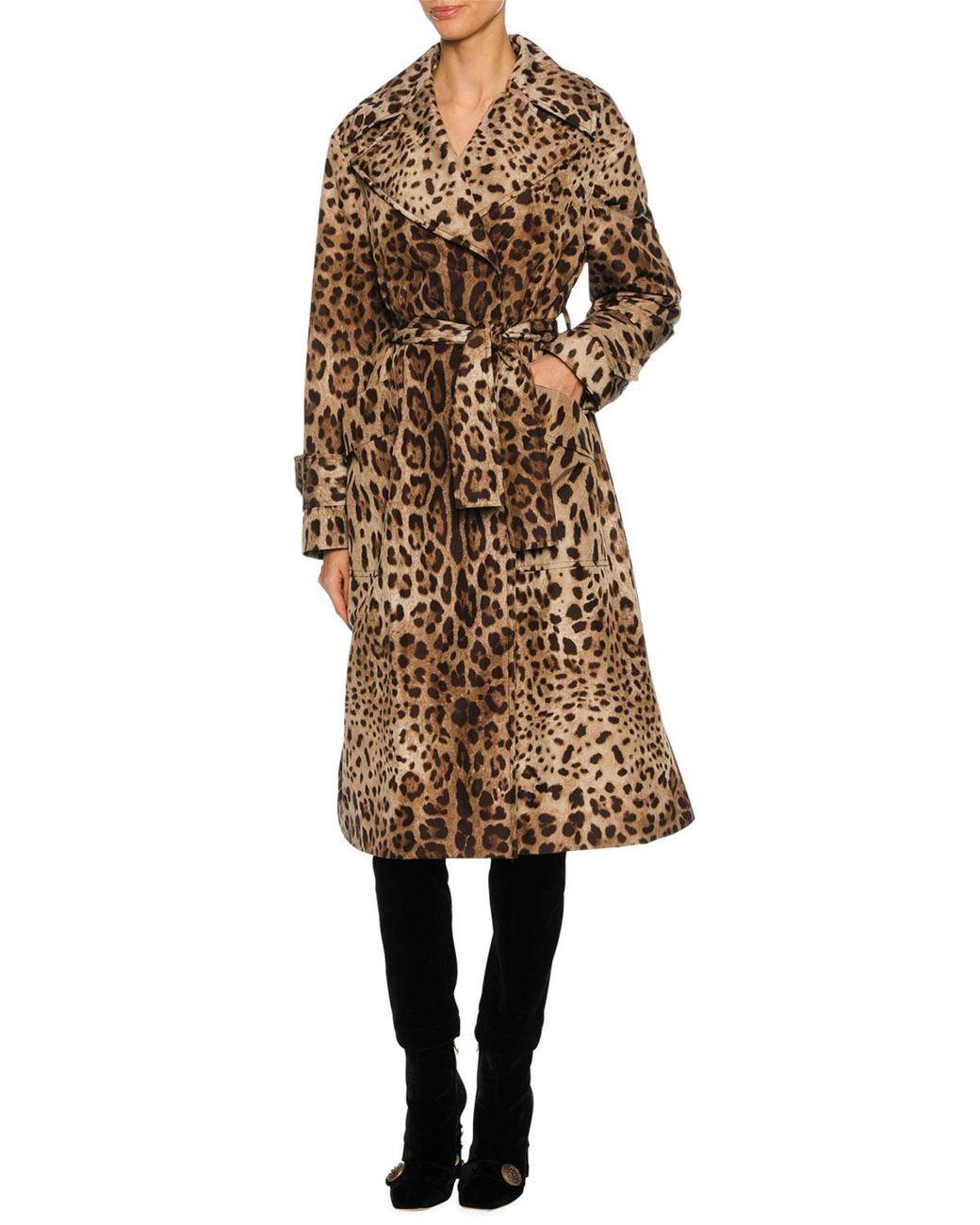 Dolce   Gabbana - Brown Leopard-print Long Trench Coat - Lyst 8c11005ea