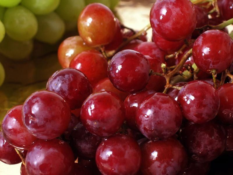 Red grapes bursting with flavors - how can you resist?