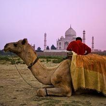 A Godly Dance at the Taj Mahal