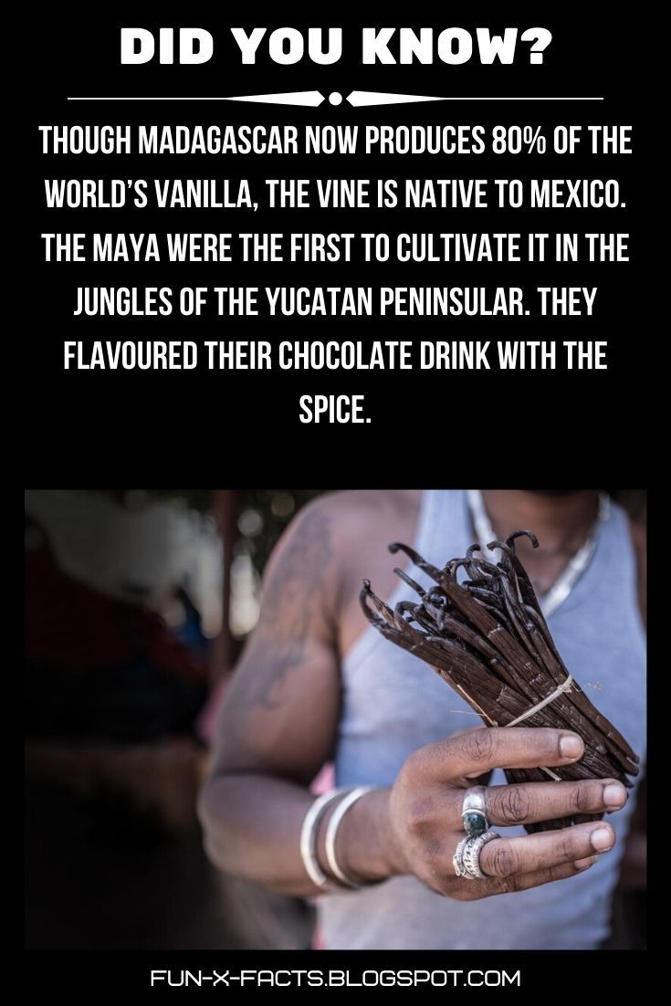 Amazing And Weird WTF Facts  Though Madagascar now produces 80 of the worlds vanilla the vine is native to Mexico