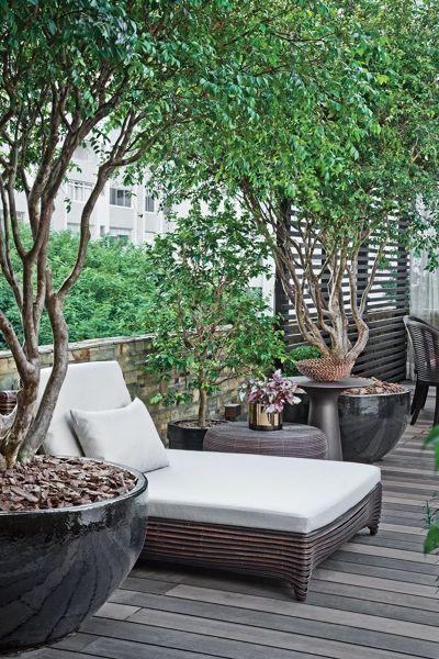 Plantas terraza Terrazas Pinterest Terraza jardin, Terrazas y - Decoracion De Terrazas Con Plantas