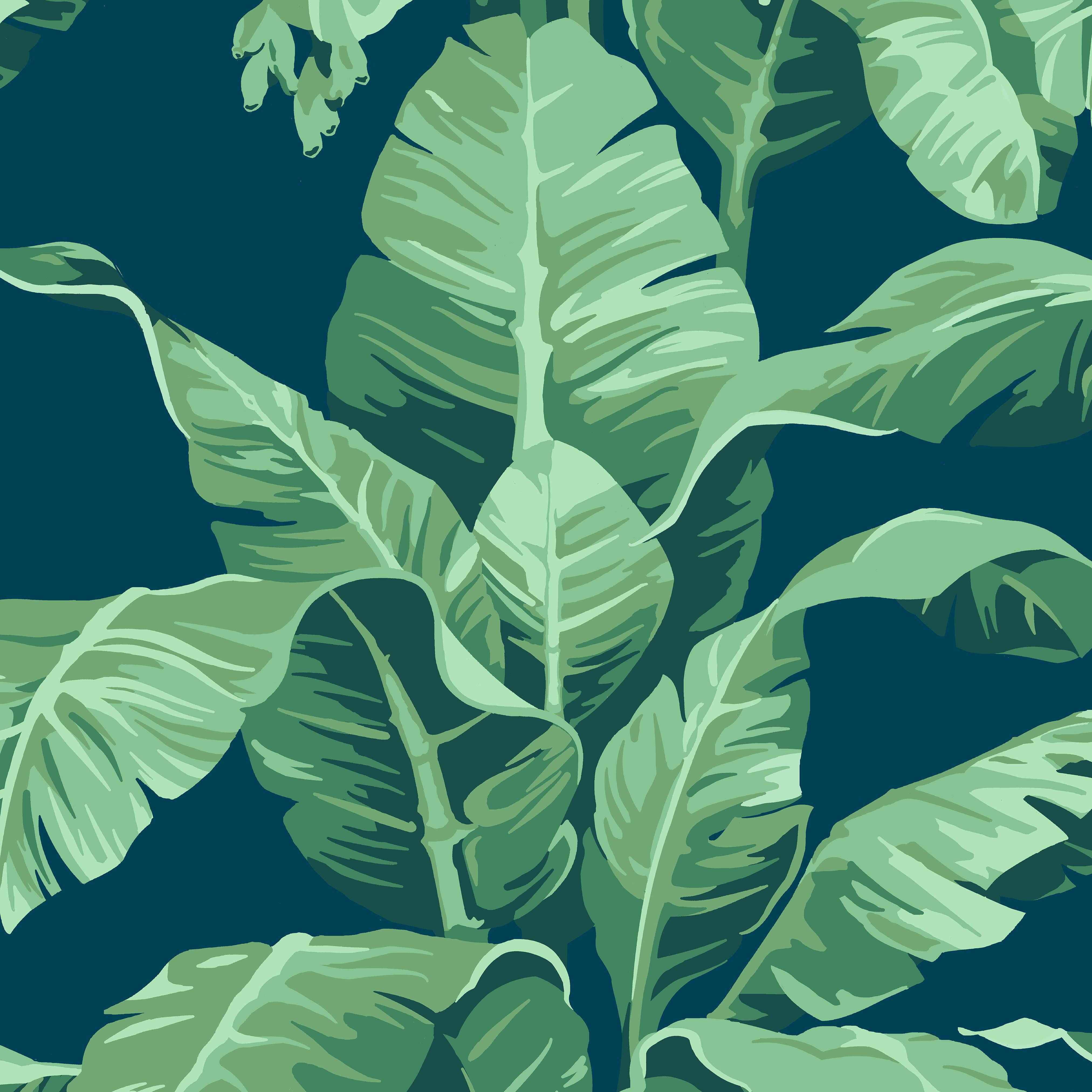 Pacifico Palm Wallpaper By Nathan Turner Indigo Telephone Line Wiring Group Picture Image Tag Keywordpictures