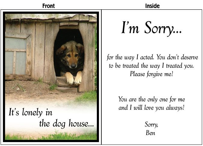 Big Iu0027m Sorry Card! Available In 2u0027, 3u0027, And  Free Printable Sorry Cards